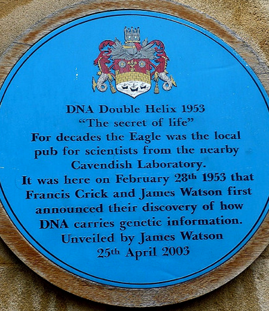 DNA Double Helix Plaque outside the Eagles Pub, Cambridge UK